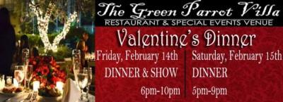 Green Parrot Valentine's Dinner