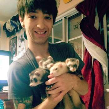 Sebastian Alexander-Bly Swisher and his ferrets
